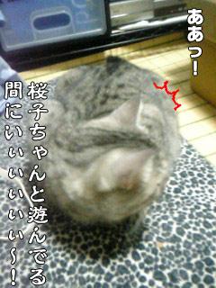 98_4.jpg