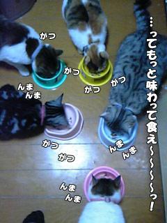99_3.jpg