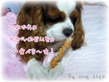 nene_11_8.jpg