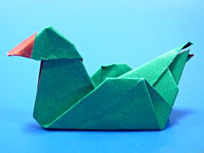 20060323b.jpg