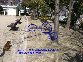20060329184701.jpg