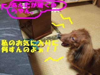 20061021111908.jpg