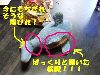 20061021111923.jpg
