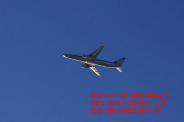 AFチェック(40D+EF100-400)