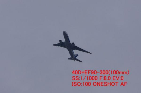AFチェック(40D+EF90-300)