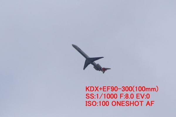 AFチェック(KDX+EF90-300)