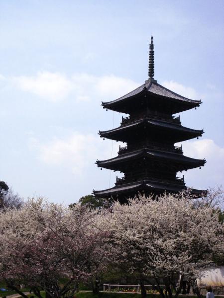 備中国分寺五重塔と桜・その2(by IXY DIGITAL 910IS)