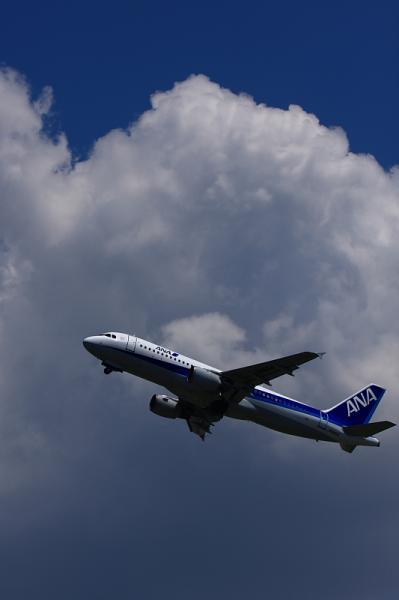ANA A320 NH735@猪名川土手(by 40D with EF100-400)