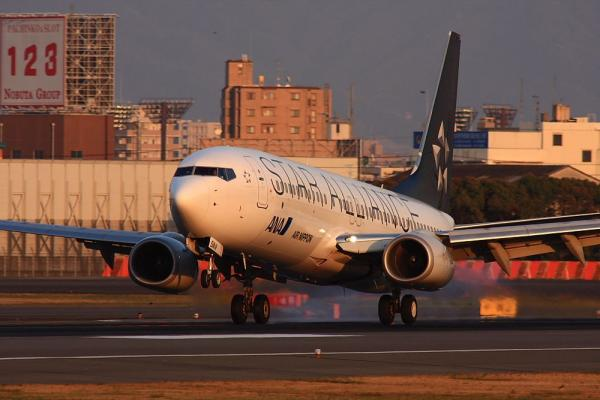 ANA B737-881 StarAlliance NH186@伊丹スカイパーク(by 40D with SIGMA300/2.8EX+APO TC2x)