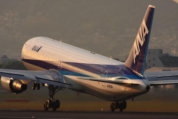 ANA B767-381 NH427@伊丹スカイパーク(by 40D with SIGMA300/2.8EX+APO TC2x)