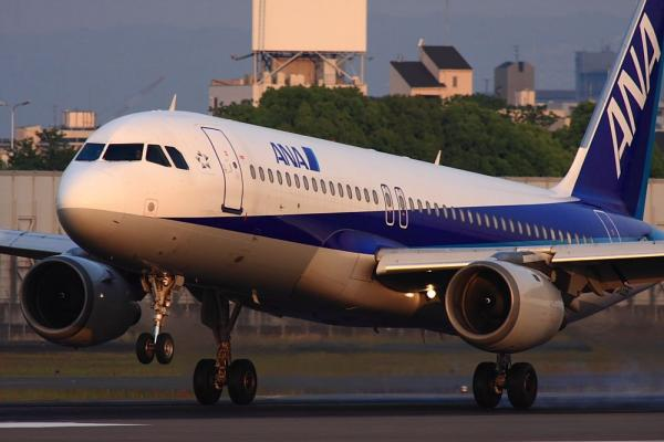 ANA A320-211 NH2177@伊丹スカイパーク(by 40D with SIGMA300/2.8EX+APO TC2x)
