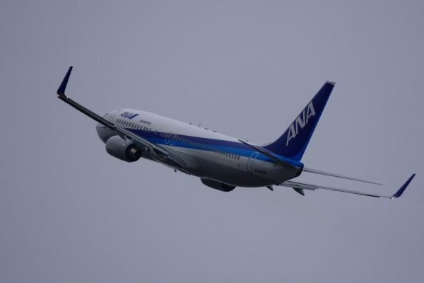 ANA B737-881 NH167@RWY14Rエンド猪名川土手(by 40D with EF100-400L IS)