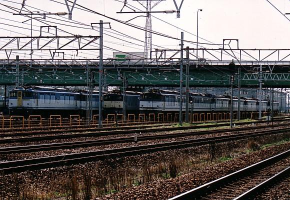 080329-inazawa-001.jpg