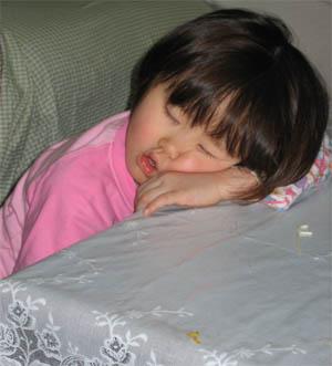 夕食後、疲れてテーブルで寝ちゃった