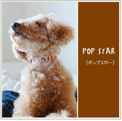 POP1.jpg
