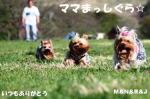 まりちゃん どうもありがとう ♥♥