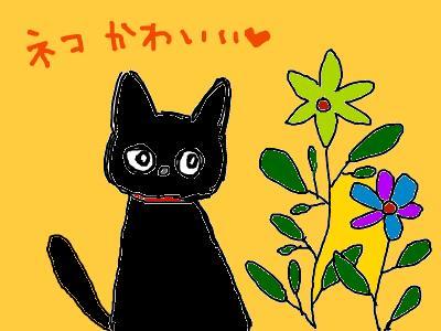 snap_nicoringo_20097603958.jpg