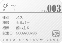 java_club.jpg