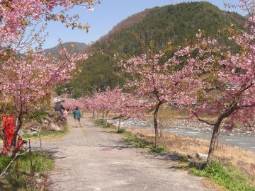 遠山郷 (6)
