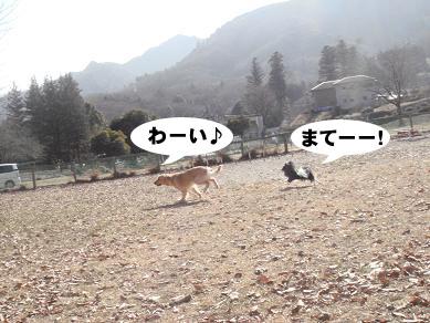 20080119225609.jpg