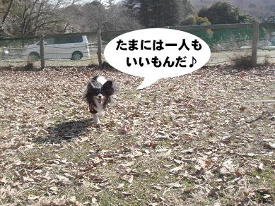 20080119230746.jpg
