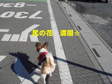 20080124210855.jpg