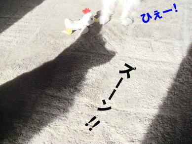 20080204162322.jpg