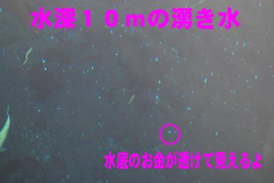 DSC_0083のコピー