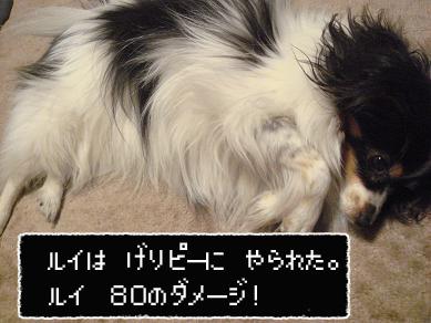 DSC04123のコピー