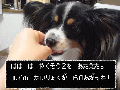 DSC04112のコピー