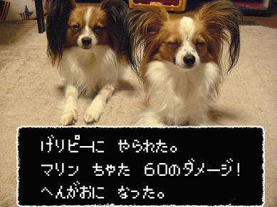 DSC04121のコピー