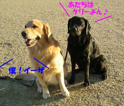 SANY0005_20081208232358.jpg