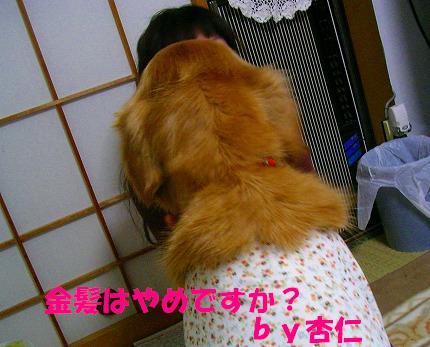 SANY0009_20081023125018.jpg