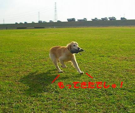 SANY0023_20081130144045.jpg