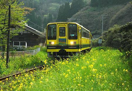 20060430-04407702-jijp-soci-view-001.jpg