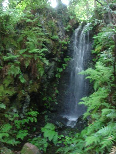 nehangunjo7440 滝