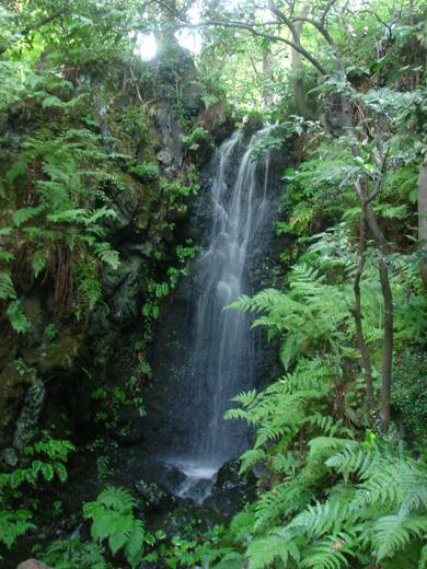 nehangunjo7441 滝