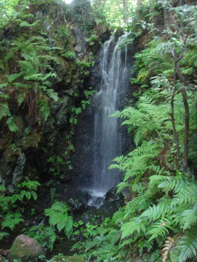 nehangunjo7442 滝