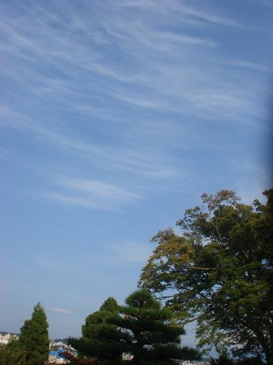 nehangunjo7499 風