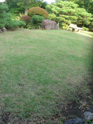 nehangunjo7501 主屋縁側からみる芝生