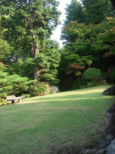 nehangunjo7502 庭のすみ