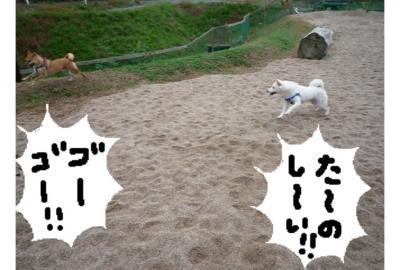 縺溘・縺励>_convert_20081030010631