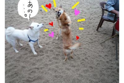 縺ゅ・_convert_20081030010917