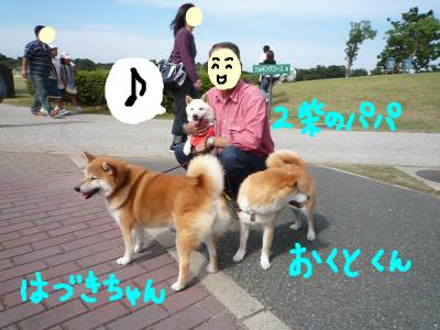 snap_nobirumaruajinikkori_2008101133748.jpg