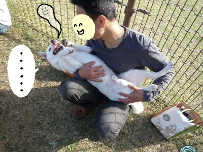 snap_nobirumaruajinikkori_200810413351.jpg