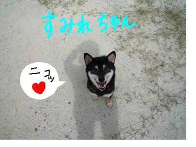 snap_nobirumaruajinikkori_200890222014.jpg