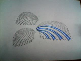 「Marine Blue Ⅳ」③