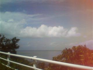 海が見えてきた。