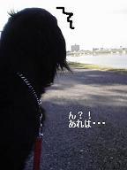 200710042.jpg