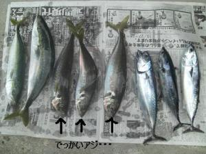 200710171.jpg